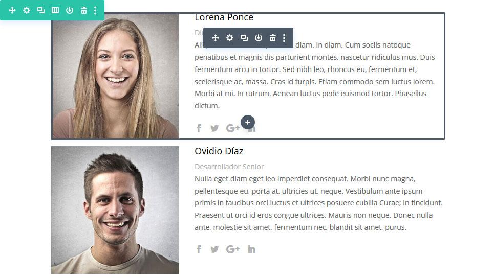 """Divi - Módulo """"Persona"""""""